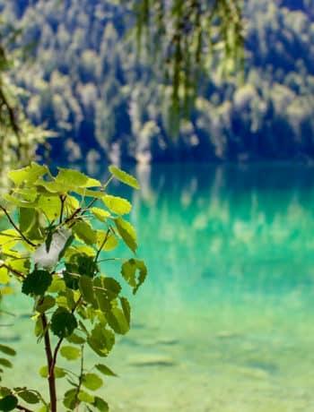 Hintersteiner See, Tirol